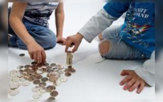 Как освободиться от уплаты госпошлины на алименты?