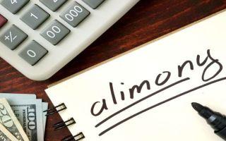 Нужно ли платить алименты с недвижимости?